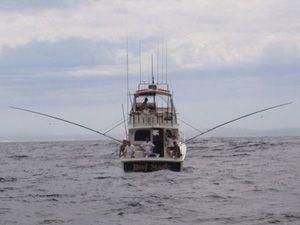 Fishing charters on Reef Magic