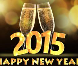 New Years Eve 2015 - Only 12 Sleeps Left!